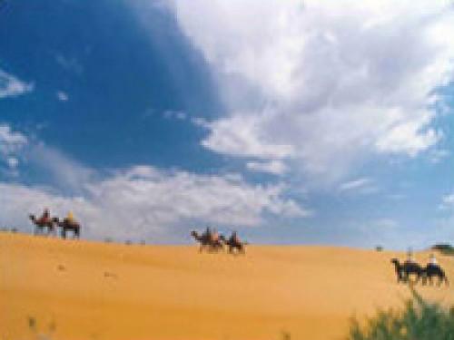 Вертолетный тур На верблюдах через Кызыл-Кумы
