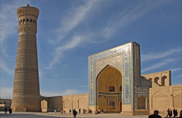 В Узбекистане создадут государственную региональную авиакомпанию Humo Air