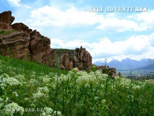 Вертолетный тур По заповедникам и Национальным паркам Узбекистан
